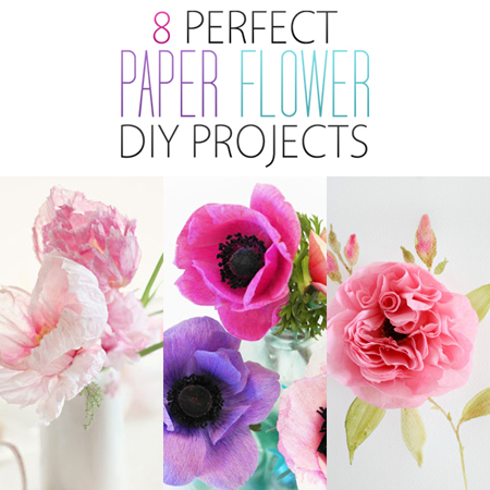 8 Perfect Paper Flower DIY Projects