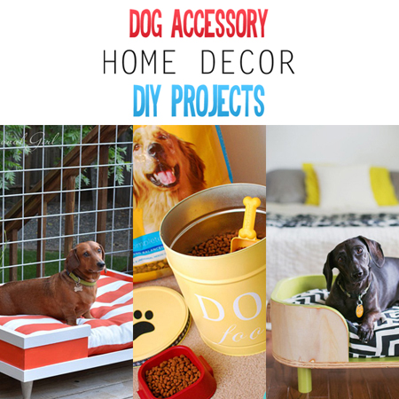 Dog Accessory Home Deocr DIY Projects
