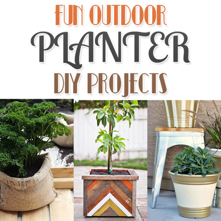 Fun Outdoor Planter DIY Projects