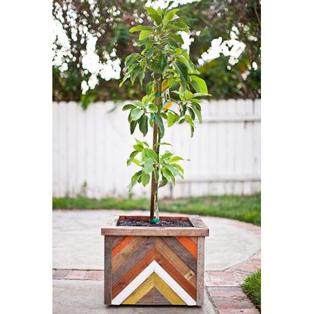 Fun Outdoor Planter DIY Project 1