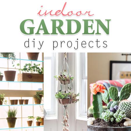 Indoor Garden DIY Projects