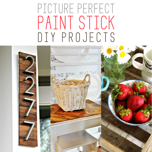Picture Perfect Paint Stick DIY Projects