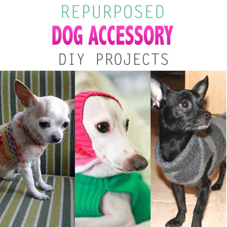 Repurposed Dog Accessory DIY Projects