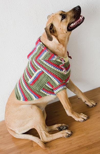 DogSweaterLG