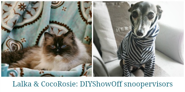DIY-Show-Off-snoopervisors
