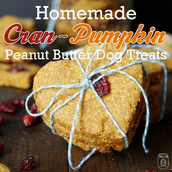 Cran-Pumpkin Peanut Butter Oatmeal Homemade Dog Treats