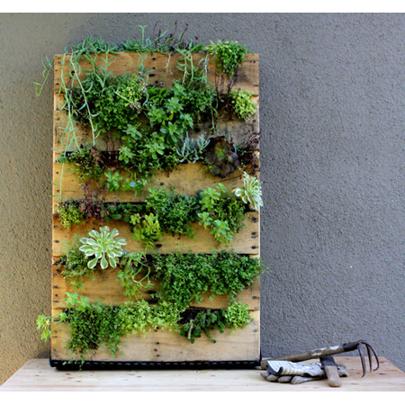 Design Sponge created a DIY project, a Recycled Pallet Vertical Garden