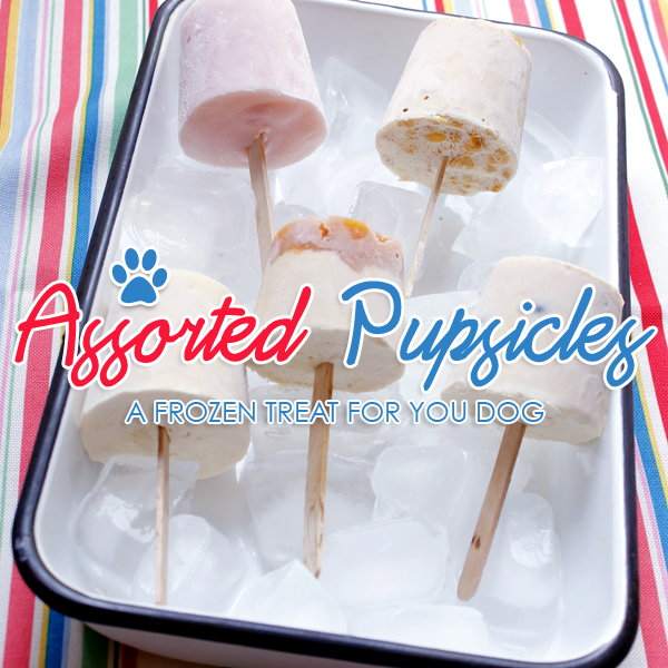 Assorted Dog Popsicles { Pupsicles }