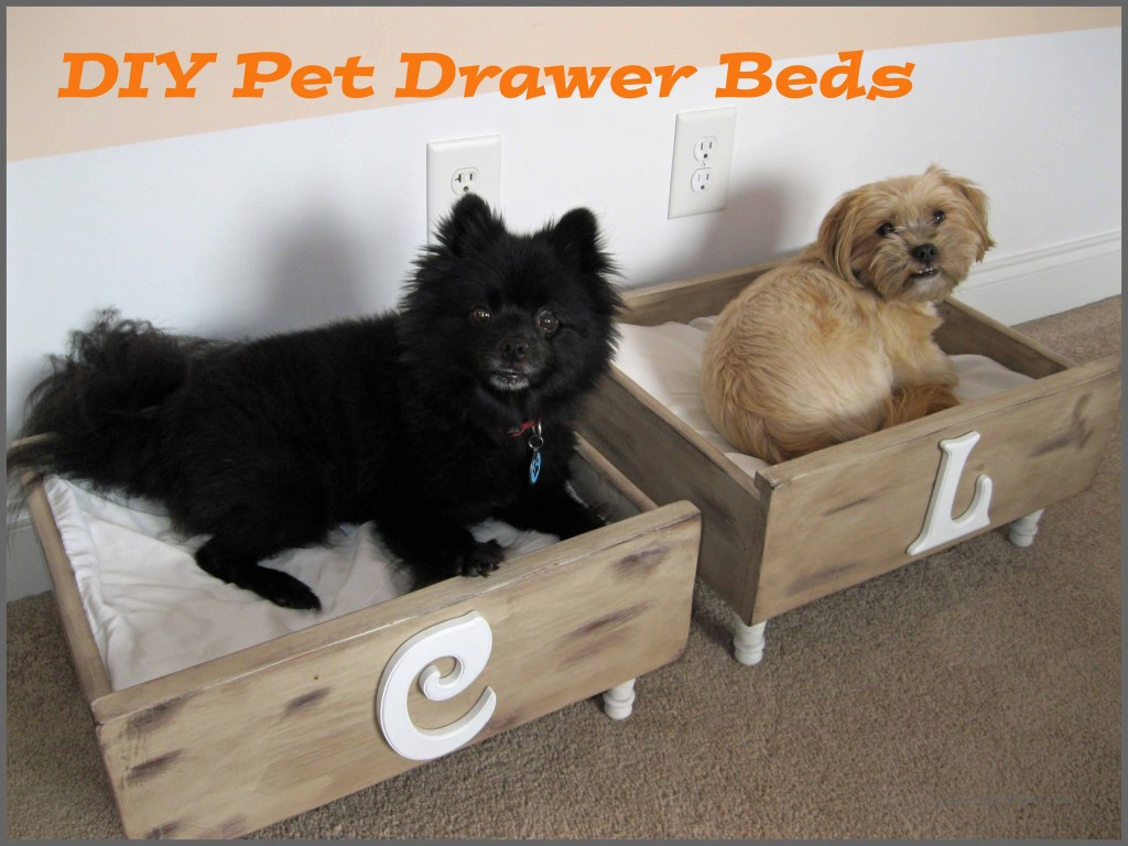 DIY-Pet-Drawer-Beds