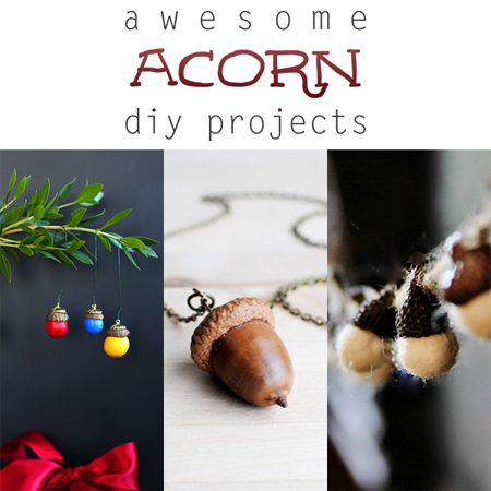 Awesome Acorn DIY Projects