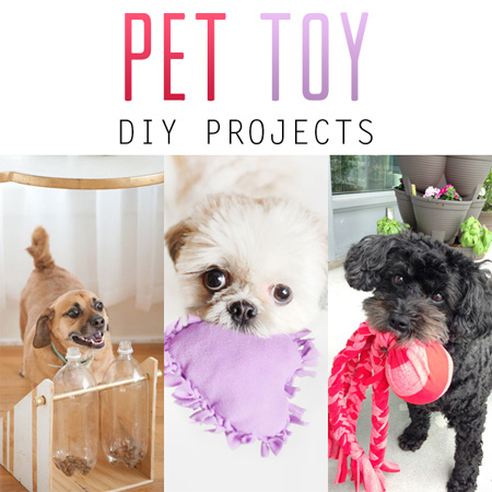 Pet Toy DIY Projects
