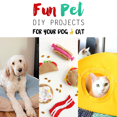Fun Pet DIY Projects for Your Dog and Cat