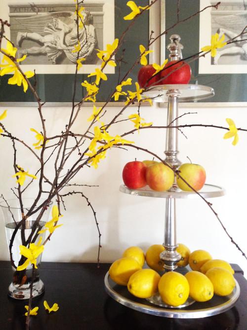 Semi-Faux-Forsythia-Branches-mydearirene-e1426023485110