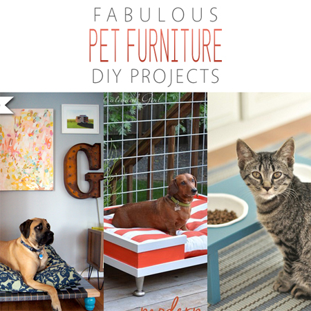 Fabulous Pet Furniture DIY Projects