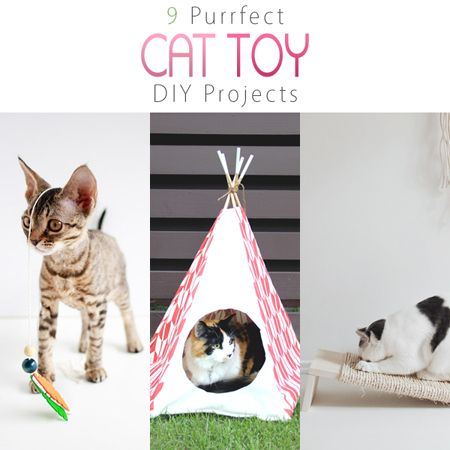 9 Purrfect Cat Toy DIY Projects