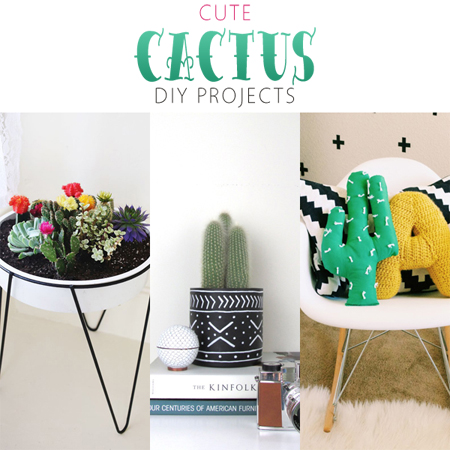Cute Cactus DIY Projects