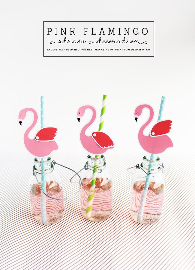 pink-flamingo-1