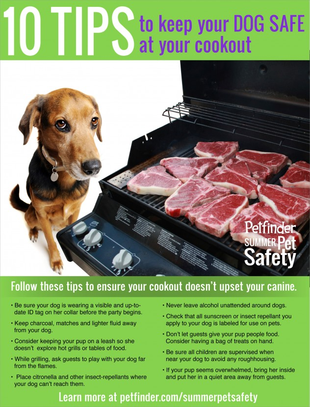 Pet Safety Infographic - ten tips to keep your dog safe at your summer cookouts