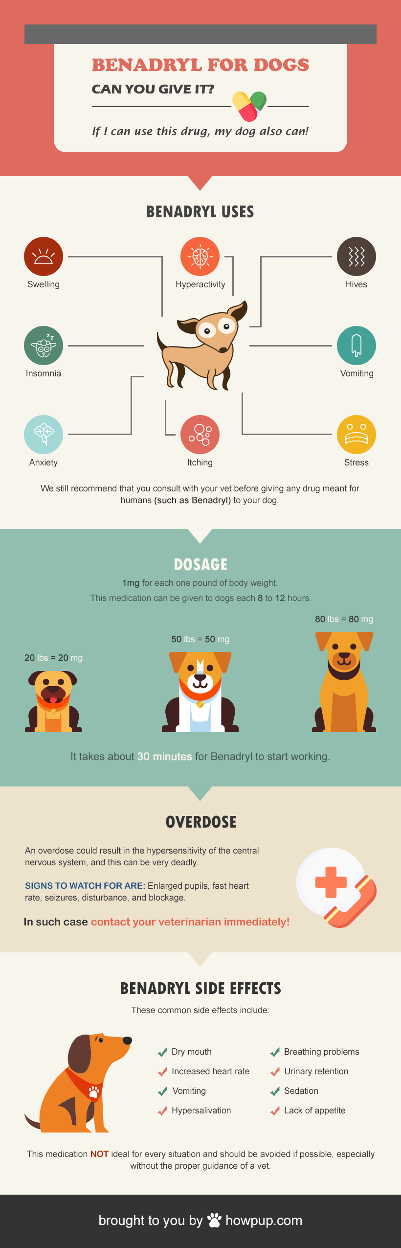 Pet Safety Infographic - benadryl uses for dogs: is benadryl safe for dogs?