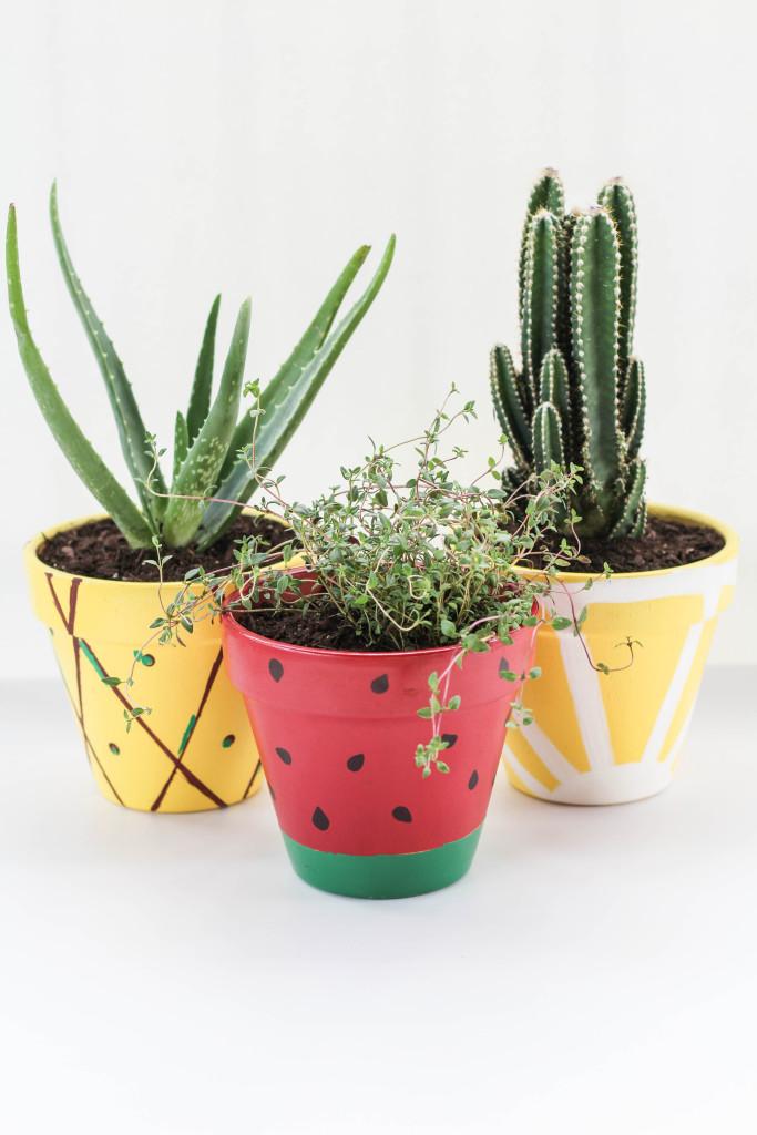 DIY-Fruit-Planters-11-683x1024