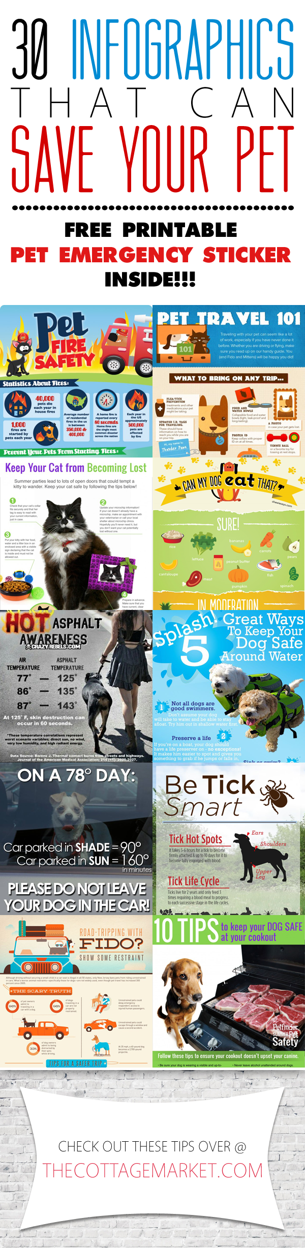 30 Infographics That Can Save Your Pet | Pet Safety Infographics