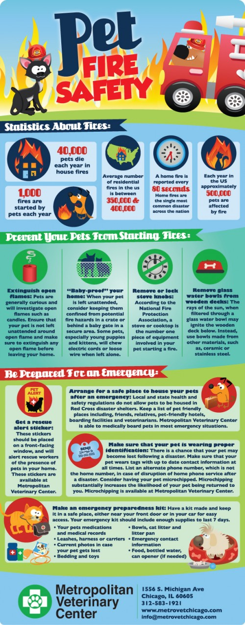 Pet Fire Safety Infographic | How to keep pets safe from house fires