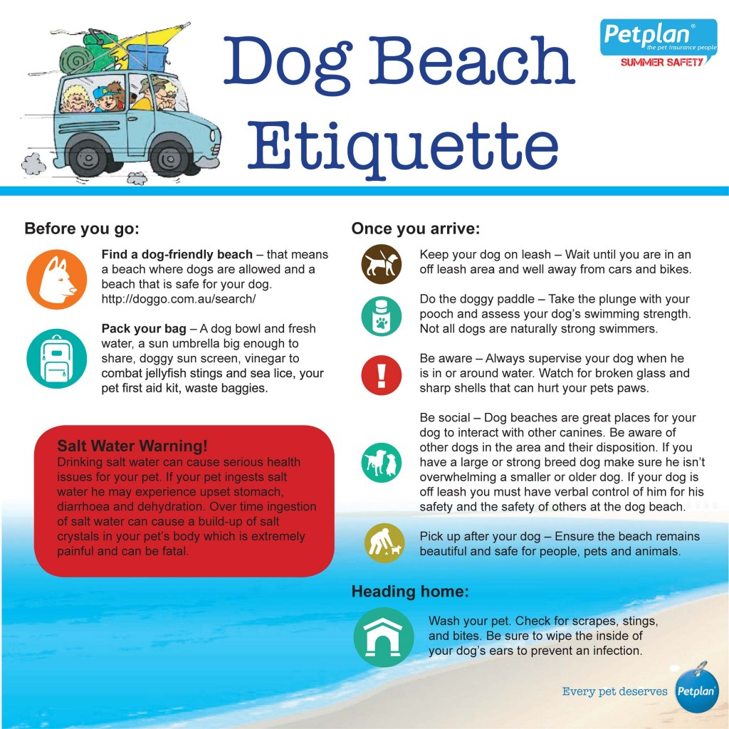 Pet Safety Infographic - dog beach etiquette and awareness