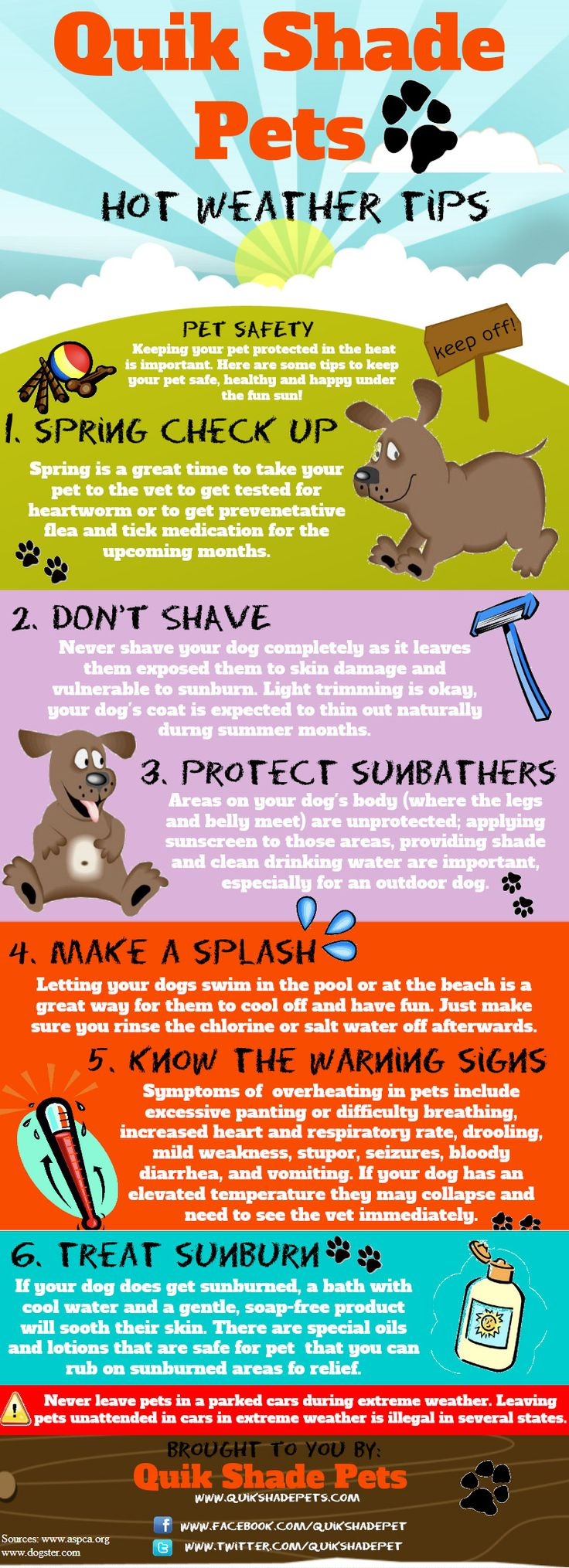 Pet Safety Infographic - how to keep your pets safe in hot weather