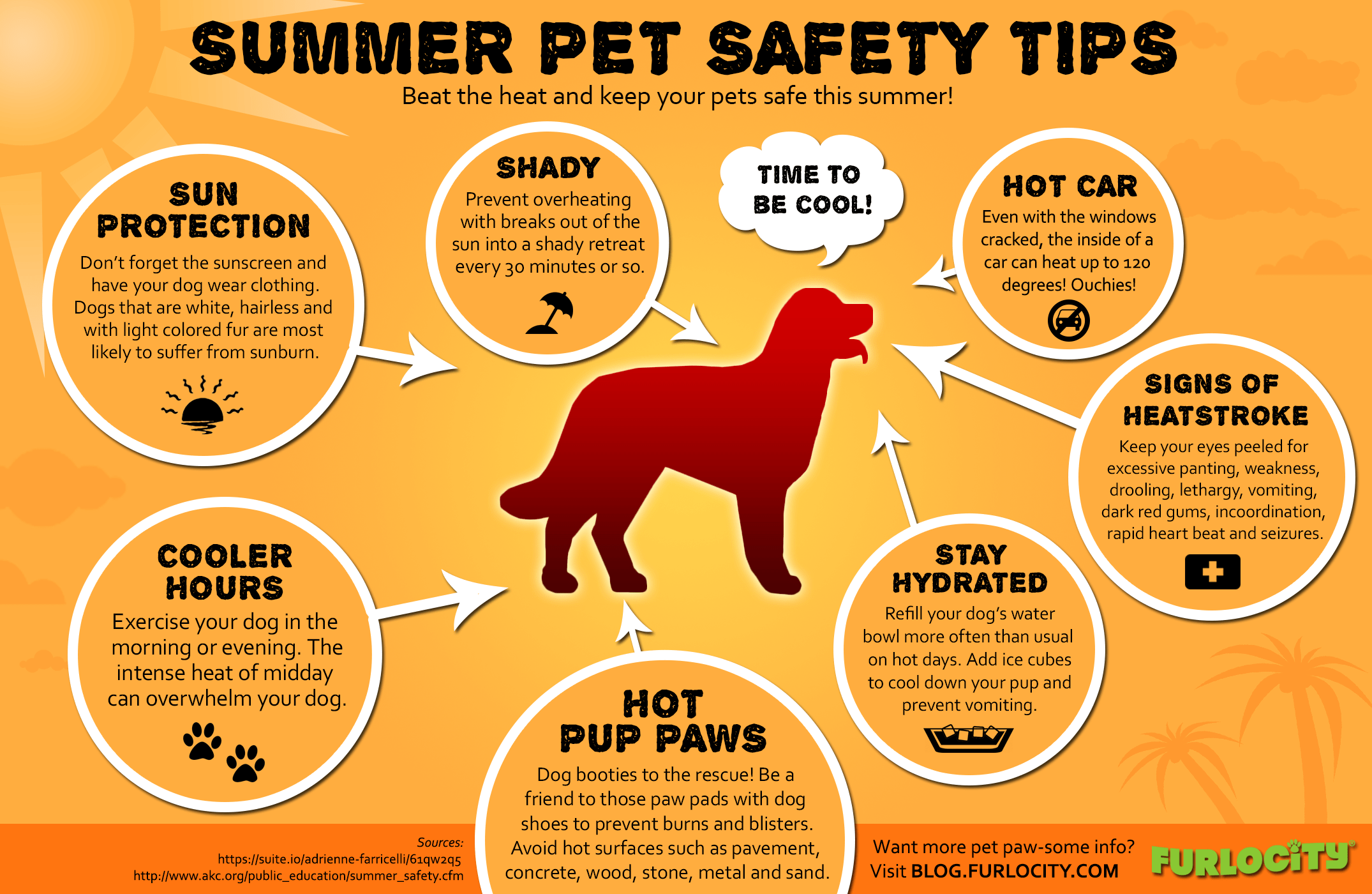 Pet Safety Infographic - pet safety tips for summer