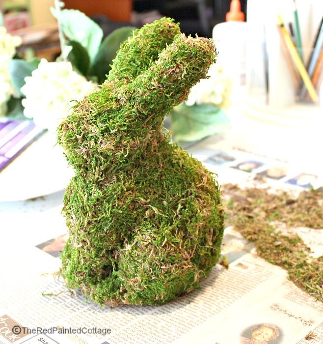 spring-bunny5