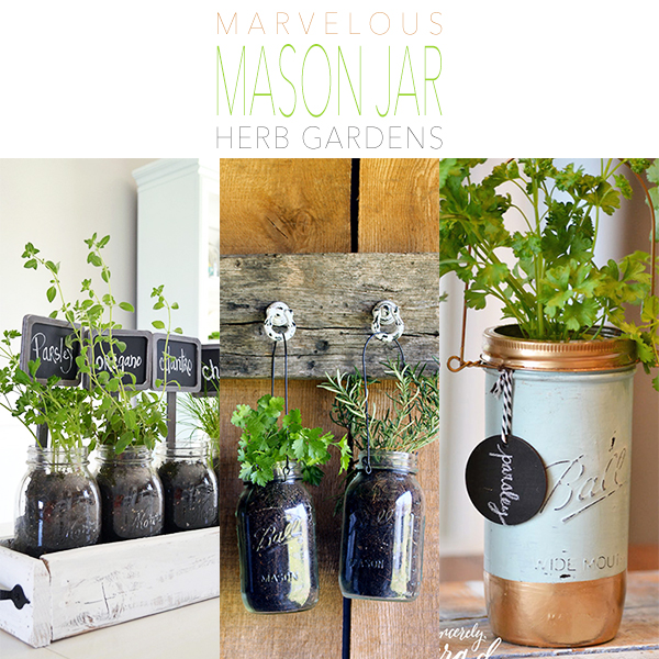 Marvelous Mason Jar Herb Gardens