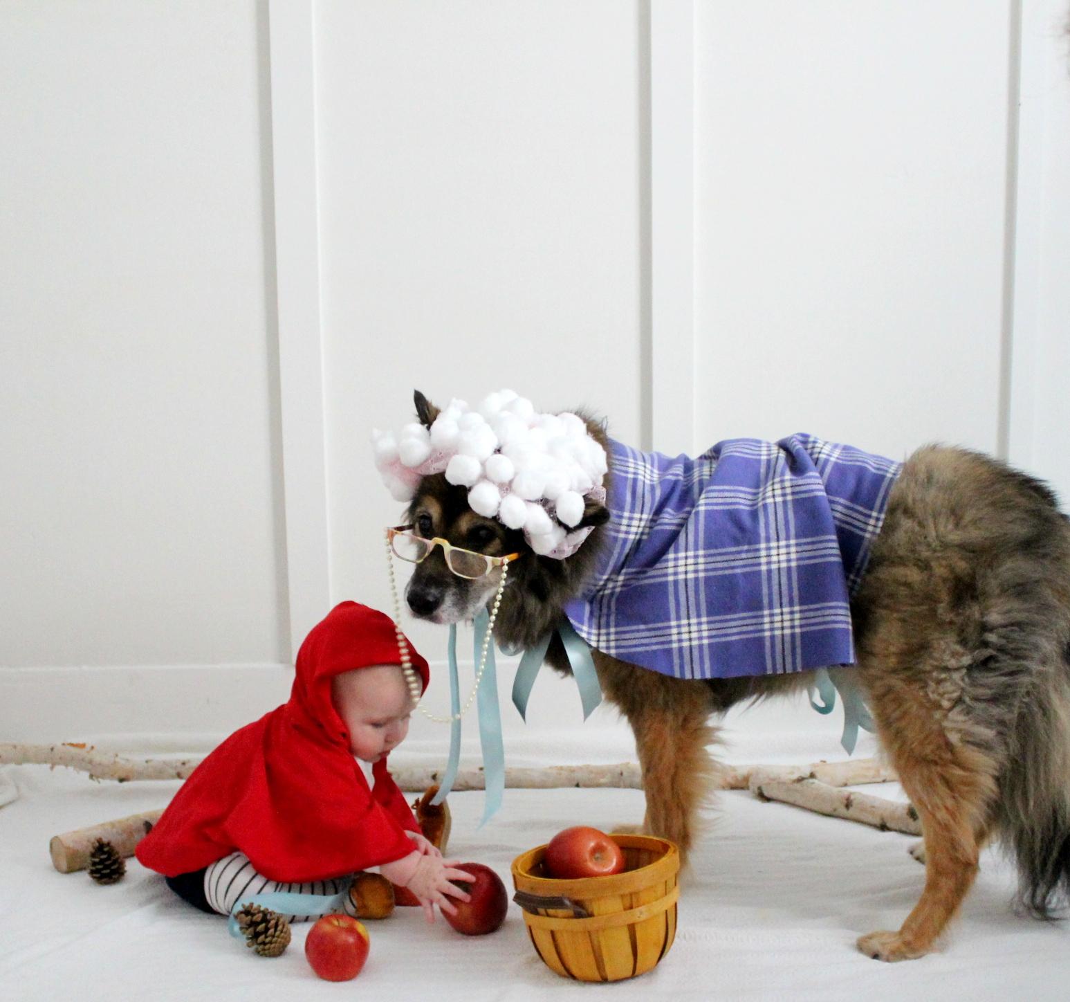 DogCostume9