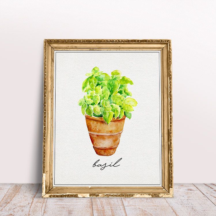 This basil printable is bright and simple in design.