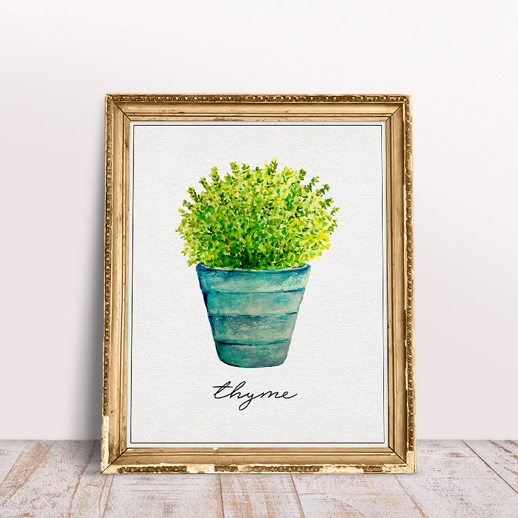 This herb printable featuring fresh thyme in a colorful vase is so cute.