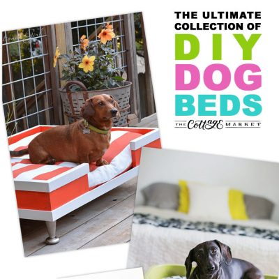 The Ultimate Collection of DIY Dog Beds 80+