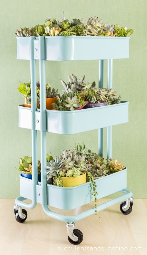 This IKEA piece can be just about anything, like this succulent garden