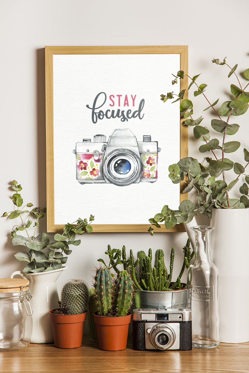 """potted plants and succulents surround a simple framed """"stay focused"""" printable"""