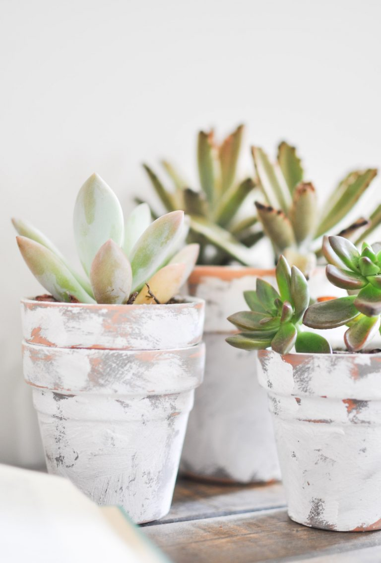 These distressed flower pots with white paint looks vintage and cute.