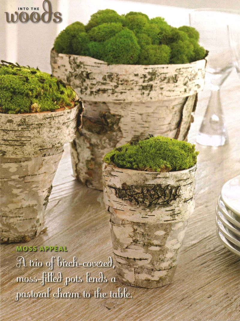 These wood flower pots filled with moss are mystical.
