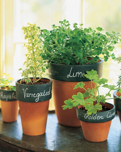 These flower pots with labels are great for growing fresh herbs.