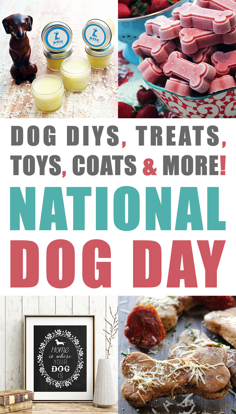 It's a special day today...It's National Dog Day and we are celebrating with Dog DIYS, Treats, Toys, Coats & More National Dog Day Rocks...Hugs to the pups