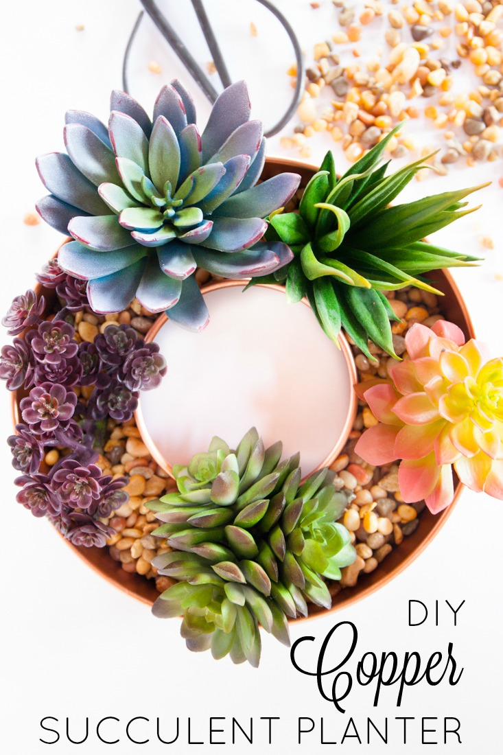 These DIY copper succulent planters are modern and funky.