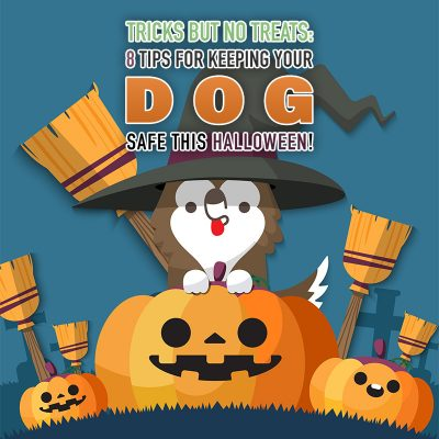 Tricks but No Treats: 8 Tips for Keeping Your Dog Safe This Halloween