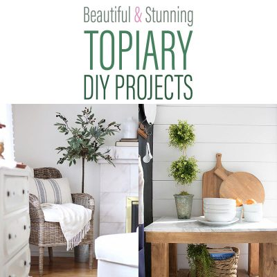 Beautiful and Stunning Topiary DIY Projects