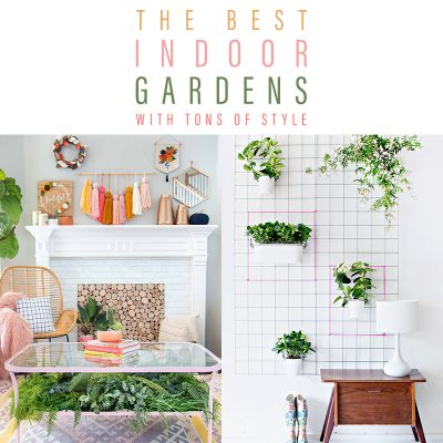 The Best Indoor Gardens with Tons of Style