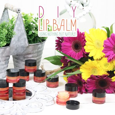 DIY Lip Balm – Using Nothing But Nature