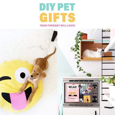 DIY Pet Gifts Your Furbaby Will Love!