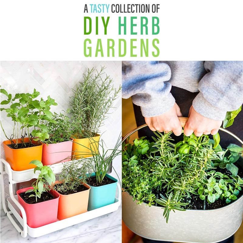 A Tasty Collection Of Diy Herb Gardens The Cottage Market