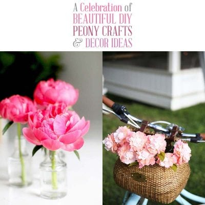 A Celebration of Beautiful DIY Peony Crafts and Decor Ideas