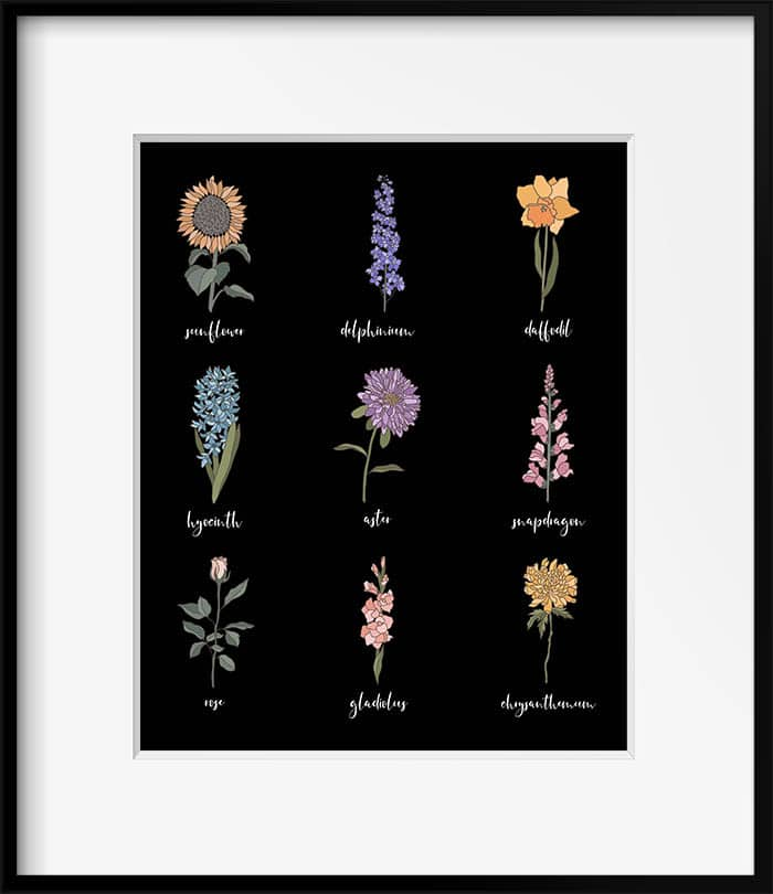This Free Printable Farmhouse Flower Sampler comes in 4 different Styles, vintage, weathered wood, chalkboard and white. One of them will be perfect for your Farmhouse Home. A Sweet Botanical Touch!